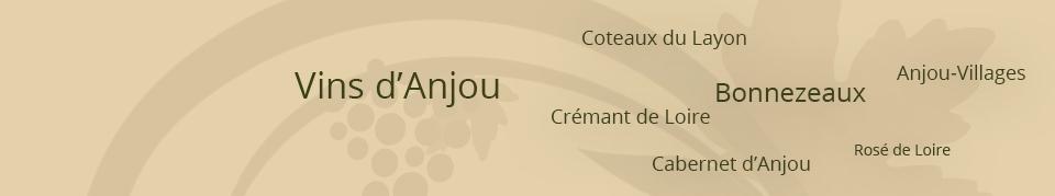 DOMAINE DU PETIT VAL – GOIZIL : Bonnezeaux, Coteaux du Layon, Anjou-Villages, Anjou rouge, Cabernet d'Anjou, Bonnezeau, Rosé de Loire, Crémant de Loire, à chavagnes - DOMAINE DU PETIT VAL – GOIZIL : Bonnezeaux, Coteaux du Layon, Anjou-Villages, Anjou rouge, Cabernet d'Anjou, Bonnezeau, Rosé de Loire, Crémant de Loire, à chavagnes